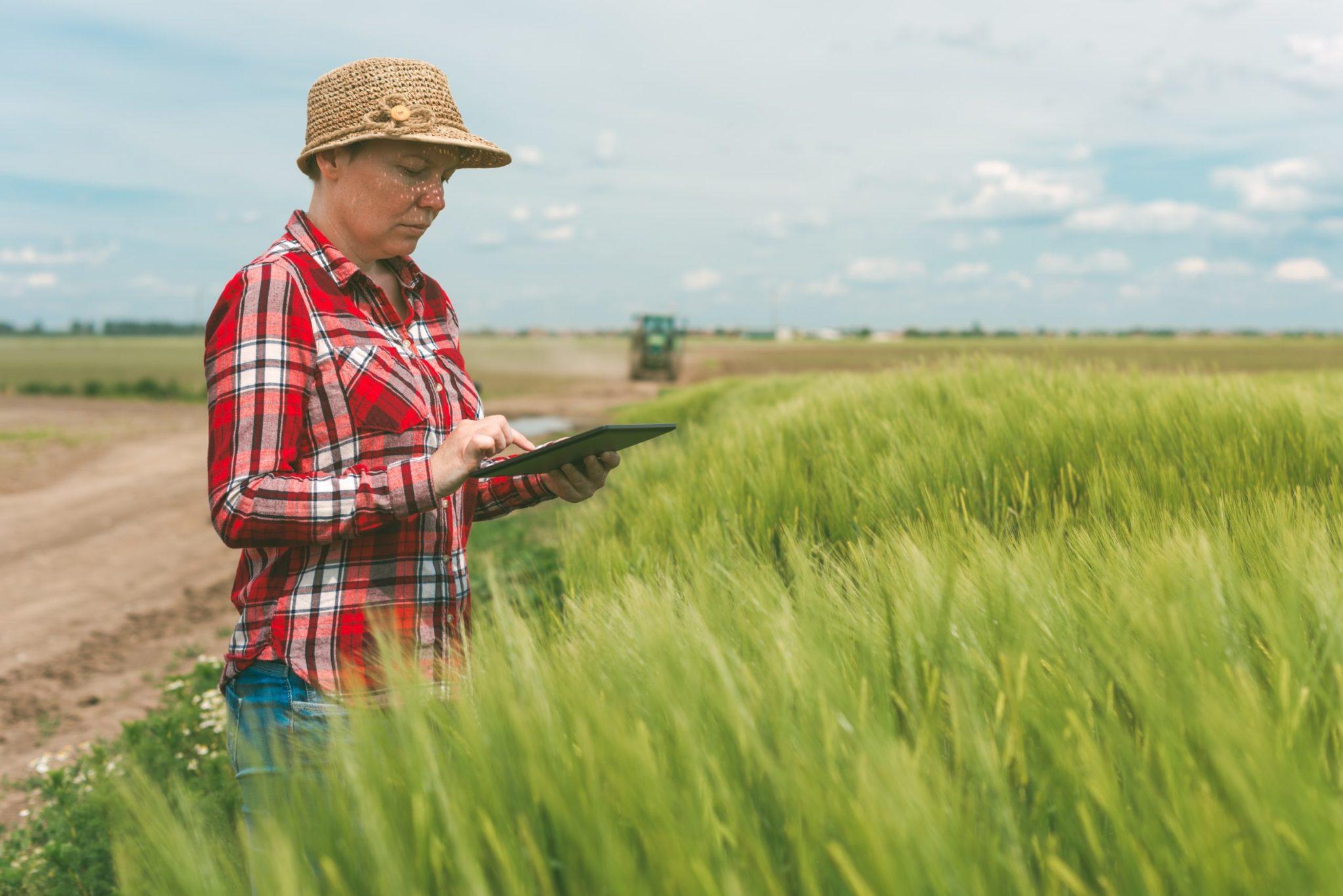 tecnologi-campo-agricultura