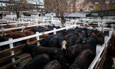 Mercado de gado Liniers em Buenos Aires