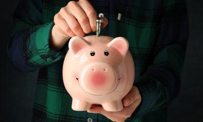 dinheiro porco
