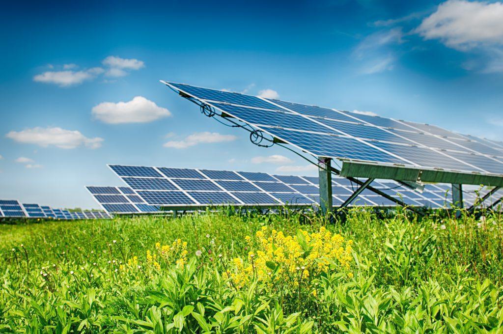 Crise hídrica: painéis em planta de energia solar.